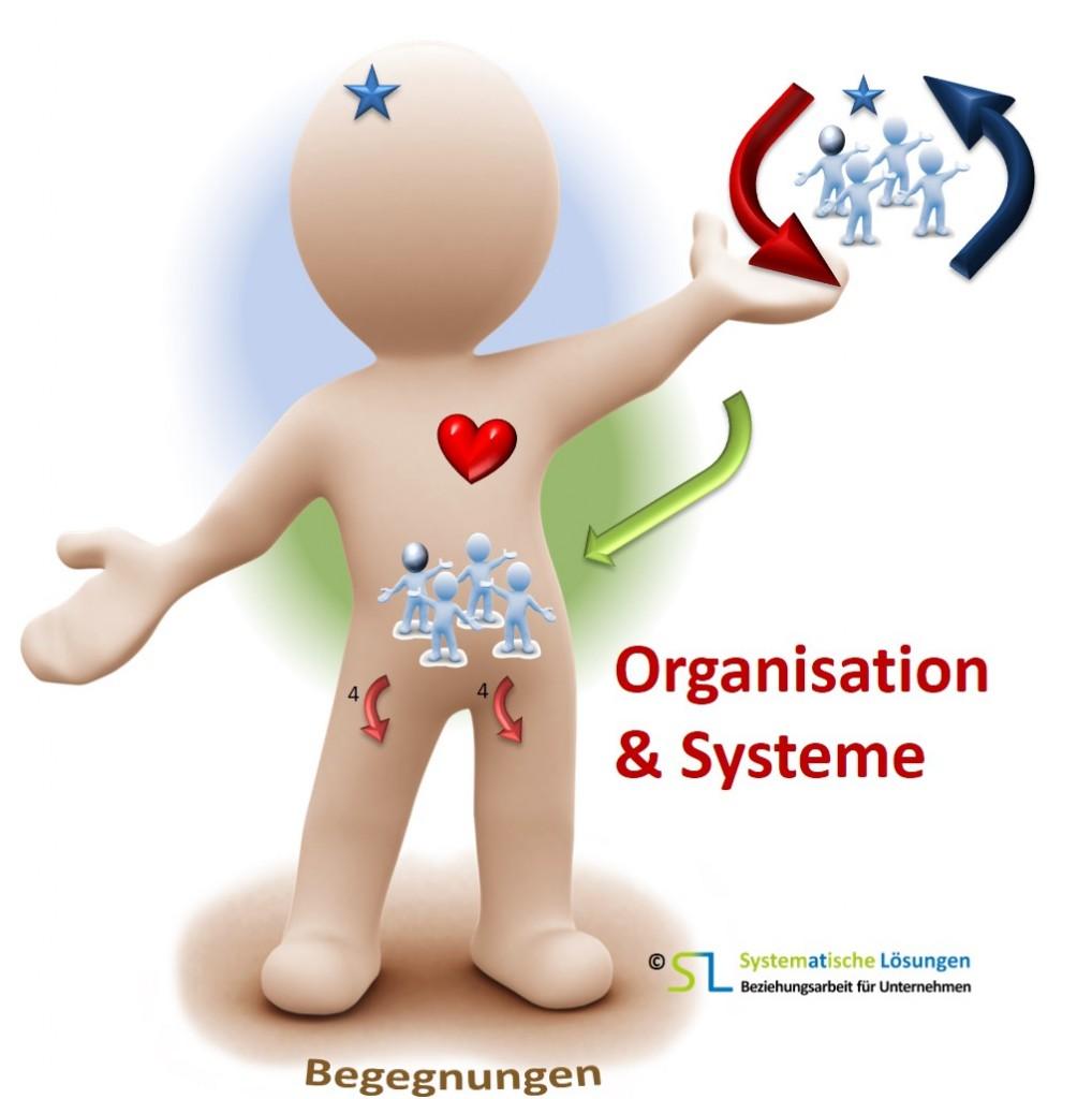 SL-Beziehungsarbeit - Organisation und Systeme