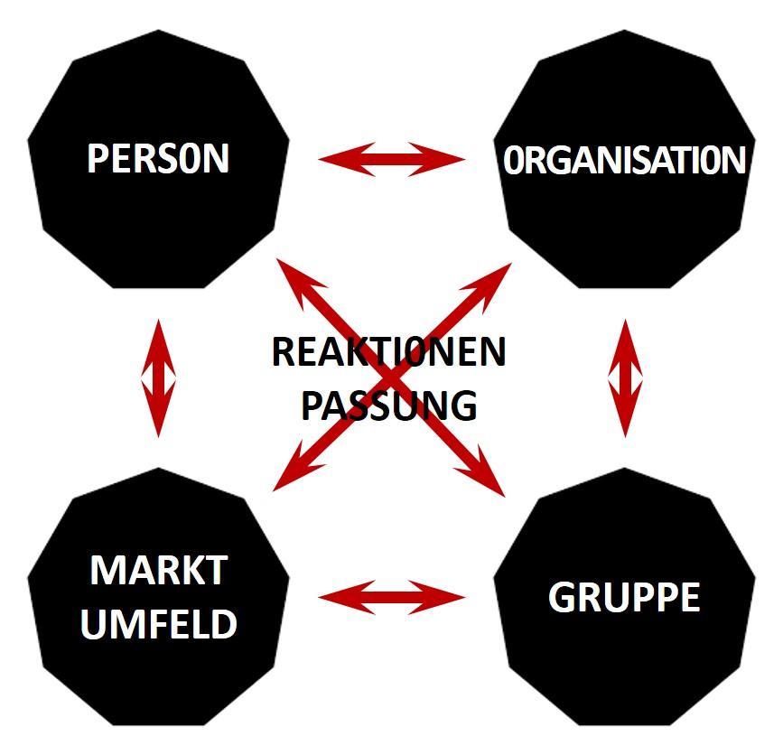 Passung der Organisation zum Markt - 9 Levels